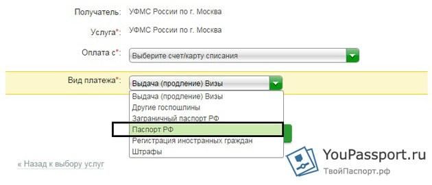 Получение паспорта РФ в 14 лет - документы, заявление, госпошлина, сроки