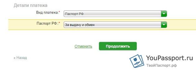 14 лет российский паспорт: