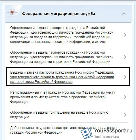 Пошаговая инструкция по заполнению заявления формы №1П.